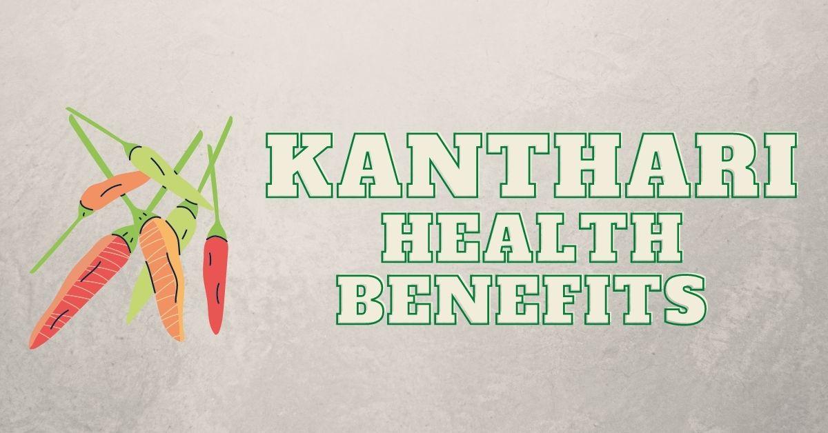 Kanthari Mulaku English name & Health Benefits