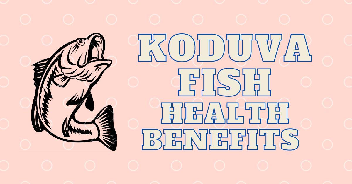 Koduva Fish in English, Tamil, Malayalam, Telugu, Kannada
