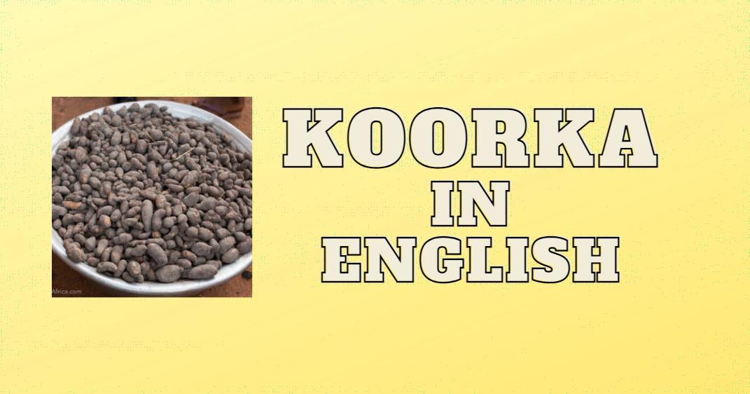 Koorka in English & Health Benefits